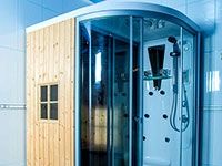 Sauna with Shower Cabine